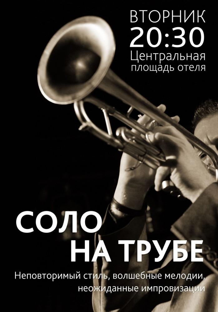 2014_07_01_трубач
